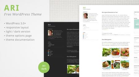 theme-responsive-wordpress-ari