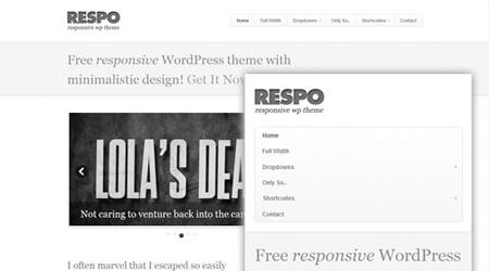 theme-responsive-wordpress-respo