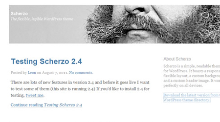 theme-responsive-wordpress-scherzo