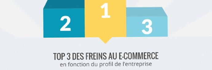 Infographie e-commerce : la rentabilité, principal frein au lancement d'une activité e-commerce