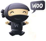 woocommerce-ninja-2