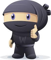 woocommerce-ninja-3