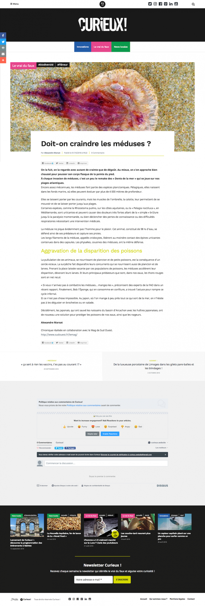 curieux projet wordpress article